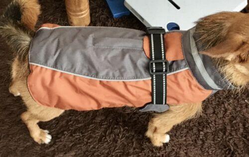 Buster Wintermantel Regenmantel Braun/silber* Gr. XS 30cm für Hunde mit Ca. 5kg