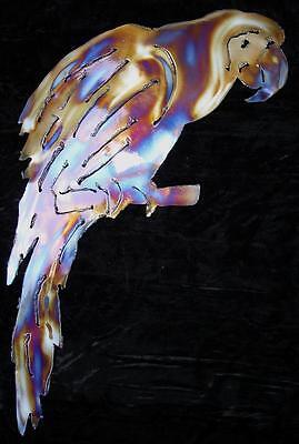 MACAW Parrot Tropical Rainforest Bird Metal Wall Art