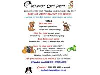Dog Walking Pet sitting Dog walker - BelfastCityPetz - looking after loved ones while you're away
