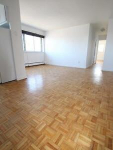 Spacious 4.5 in highrise  near McGill-Downtown - Place des arts
