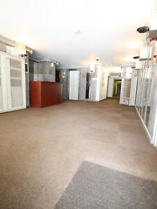 Furnished studio near McGill-downtown area - clean and bright