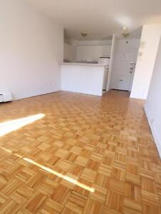 McGill area 1BR (3 1/2) in highrise, professionally managed