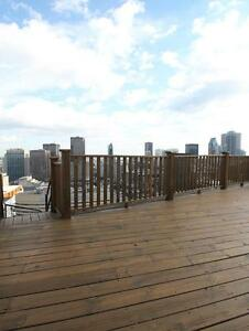 Spacious Studio, downtown highrise, clean and safe