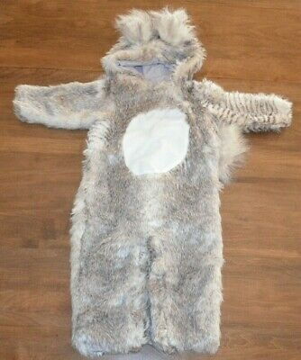 Baby Squirrel Costume (Pottery Barn Kids Baby Woodland Squirrel Halloween Costume 12-24 Months NEW)