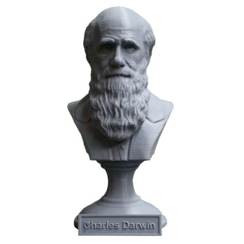 Charles Darwin 5 inch Famous English Naturist 3D Printed Bust Art FREE SHIPPING
