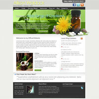 Professional Website Development Services for Business