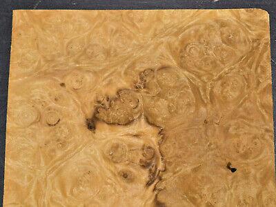 Myrtle Burl Raw Wood Veneer Sheet 7 X 15 Inches 150th   7655-40