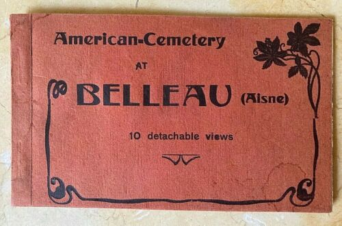 (10) ORIGINAL WW1 AMERICAN CEMETERY at BELLEAU WOODS 2nd DIV USMC POSTCARDS 1919