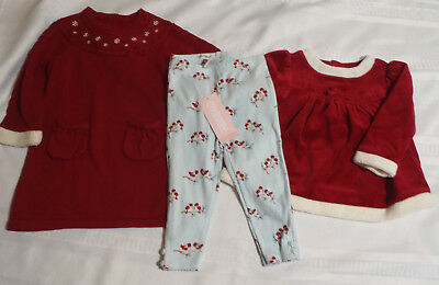 GYMBOREE Baby Girls 12-18 Month Snow Bird Shirt Pant Dress Outfit NWT