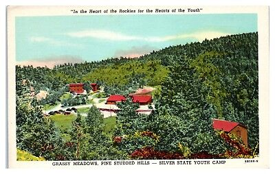 Mid 1900S Silver State Youth Camp  Pike National Forest Near Sedalia Co Postcard