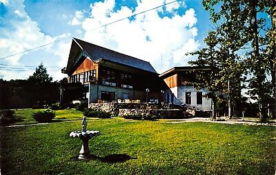 Branson-Indian Point MO~Birdbath~Rock Lane Lodge~Cocktail Lounge~1950s Postcard