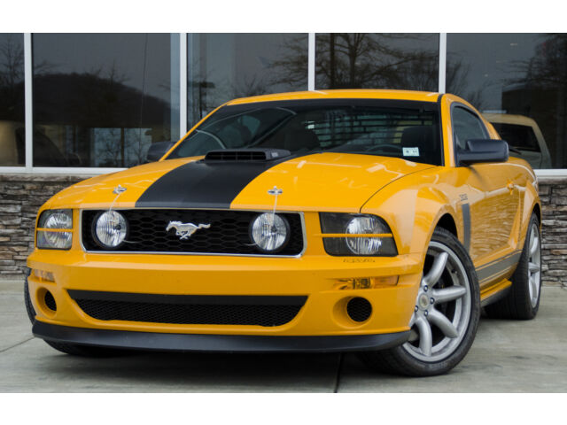 Ford : Mustang 2dr Cpe GT 2007 Ford Mustang GT Saleen Parnelli Jones Edition *LOW MILES*