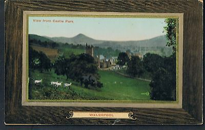 VALENTINES POSTCARD WELSHPOOL FROM CASTLE PARK image is from 1897