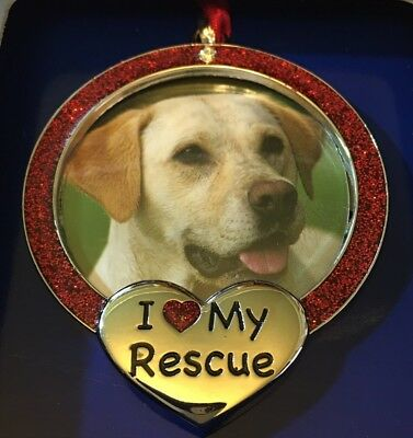 'I Love My Rescue' Collectible Dog / Cat Picture Frame Red & Silver Color NEW ()