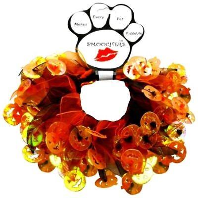 Pets And Halloween (Mirage Pets Halloween Pumpkin Smoocher for Pets - Black and Orange)