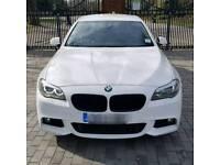 BMW F10 Kidney Grill