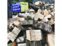 Free Wood to cut up and split for firewood