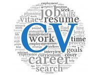 CV review and re-write by a recruitment and wording specialist. Word Bird