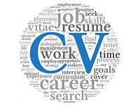 Professional CV curriculum vitae and interview consultation