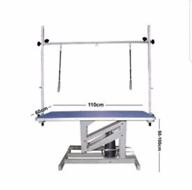 HT1100 dog grooming table with high quality hydraulic