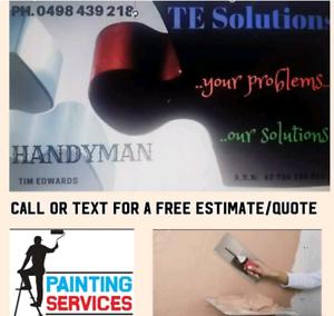 Wall Hole Repair & Plastering, Painting & Handyman / Marsden Logan Area Preview