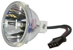 New-Lamp-Bulb-for-Toshiba-D95-LMP-23311153A-23311153