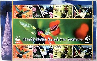 Used, 2004 MNH DOMINICA WWF BIRD STAMPS SHEET OF 8 CARIBS GREEN PURPLE THROATED CARIB for sale  Shipping to India