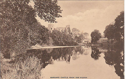 View From The Woods, BARNARD CASTLE, County Durham