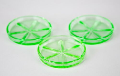 Cambridge Green Depression Vaseline Uranium Glass Coaster Set of 3 Vintage