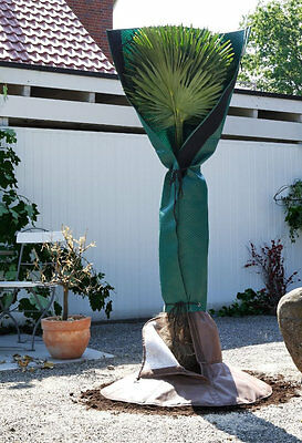 Biogreen PSS Palm Trees Root Protection 150cm Breathable + PSW wurzelschutz