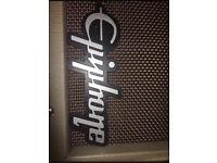 Acoustic/Electric guitar amplifier