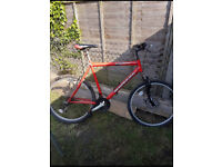 Bike Platinum £80