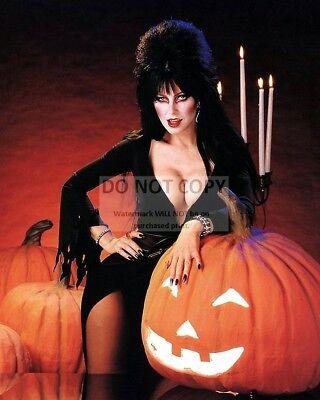 ELVIRA, MISTRESS OF THE DARK - 8X10 HALLOWEEN PUBLICITY PHOTO (OP-230) - Elvira Darks Halloween