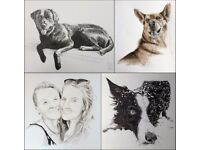 Pen&Ink pet portraits from a local artist