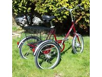 Pashley Picador Tricycle