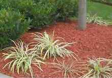 Cheap mulching  Clear Island Waters Gold Coast City Preview