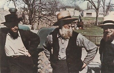 "*Pennsylvania Postcard-""Amish Men/Farm Equipment Public Sale"" *Bird-In-Hand, Pa."
