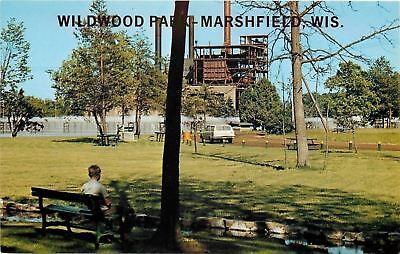 Marshfield Wisconsin~Wildwood Park~1960s Station Wagon~Boy On Bench~Postcard ()