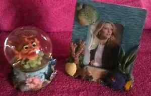 Ocean Scene Globe & Picture Frame Narangba Caboolture Area Preview