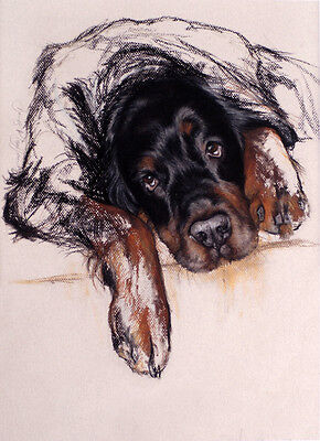 GORDON SETTER GUN DOG FINE ART LIMITED EDITION PRINT - Black and Tan