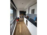 Carpet/Laminate/Linoleum Flooring good Prices