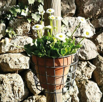 Pot Holder Wall Basket Garden Hanger, Zinc Grey Finish Wire - Basket...