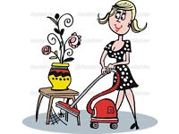 Experienced cleaner with transport
