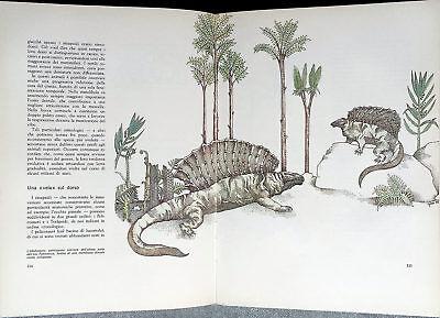 Carmelo Petronio e Renato Rippo, 5 miliardi di anni fa..., Ed. SEI, 1978