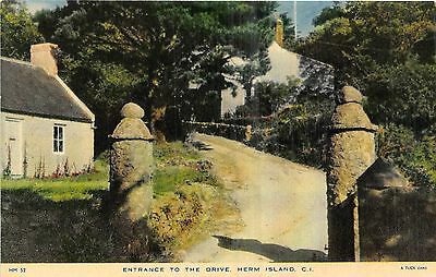 POSTCARD   HERM  ISLAND   Entrance  to  the  Drive                  TUCK