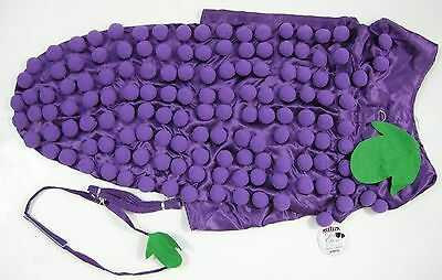 Grape Halloween Costume (Halloween Dog 4XL Costume Grape Doggie Design Harness Mia Michele Couture)