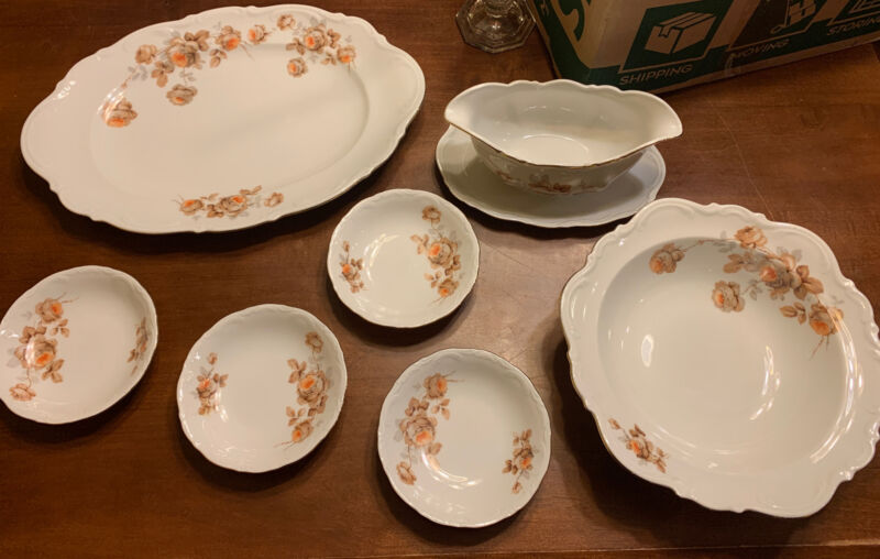 "Vintage Mitterteich Bavaria ""Norwey Rose"" Germany China 7 Pieces"