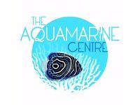 Aquarium Service Specialist. Tropical & Marine fish tank design, installation and maintenance