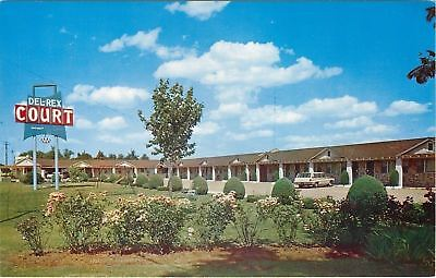 Poplar Bluff Missouri~Shaped Shrubs~Flower Plants @ Del Rex Motel 1960s ()