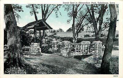 Oskaloosa Iowa Edmundson Park Stone Bridge   Well 1938 Blue Sky Postcard